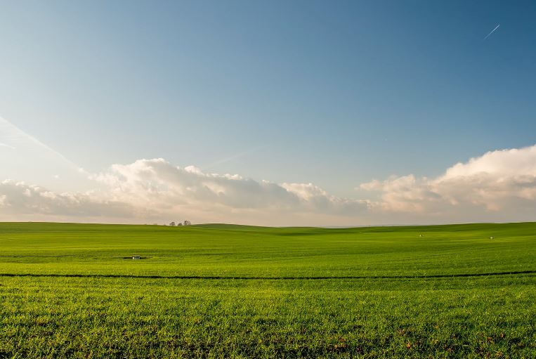 Expanded farm field