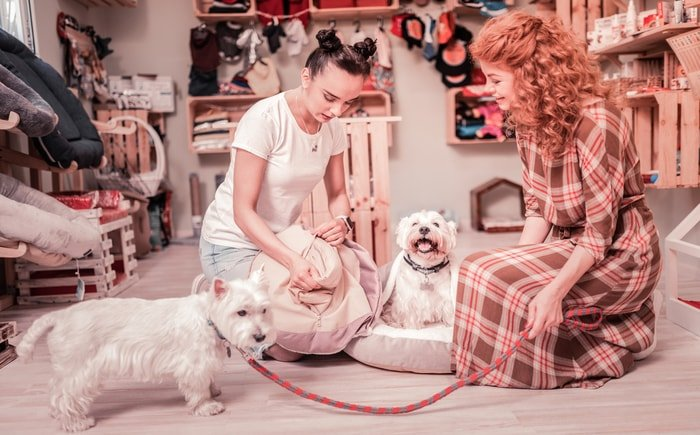 Two women and two cute dogs