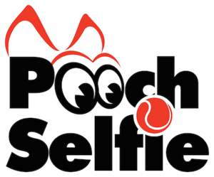 The official business name and logo of Pooch Selfie business